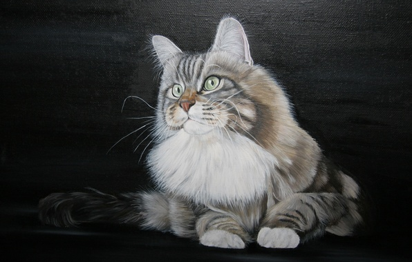 Picture white, cat, mustache, picture, paws, art, tail, painting, Tomcat, green-eyed, painting, collar.