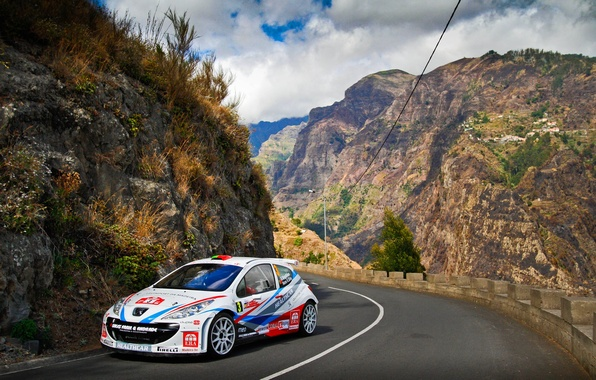 Picture Road, Mountains, White, Sport, Peugeot, WRC, Rally, Rally, 207