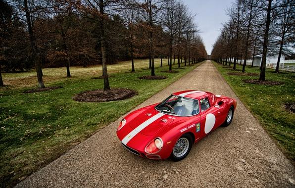 Picture trees, Park, Ferrari, Ferrari, 1964, 250 LM