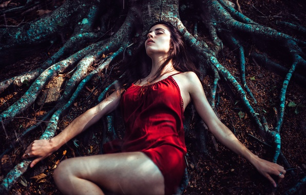 Picture forest, girl, roots, tree, stay, sleep, The moon