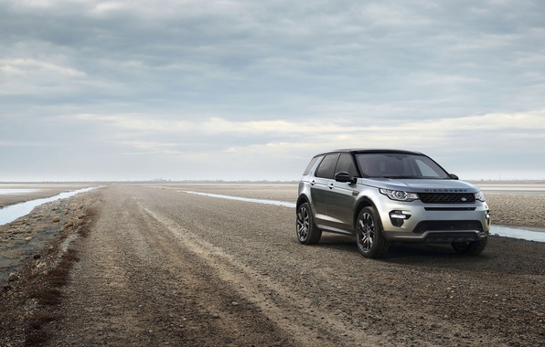 Picture sport, Land Rover, Discovery, Sport, discovery, land Rover, Startech, 2015