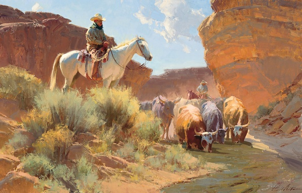 Picture river, horse, picture, cows, cowboy, drink