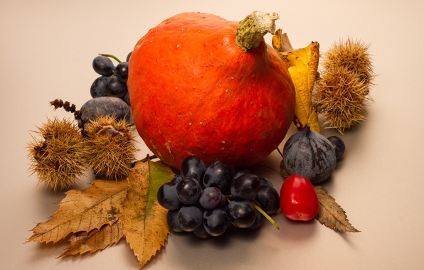 Picture autumn, leaves, berries, fruit, pumpkin, still life