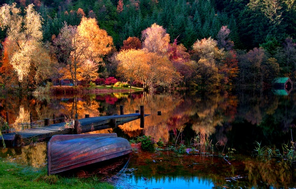 Picture autumn, forest, grass, leaves, landscape, nature, lake, boat, home, Trees
