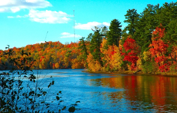 Photo wallpaper cold, lake, water, autumn