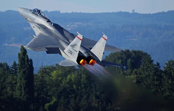 Picture the plane, the rise, nozzle, McDonnell Douglas F-15 Eagle, heat signature