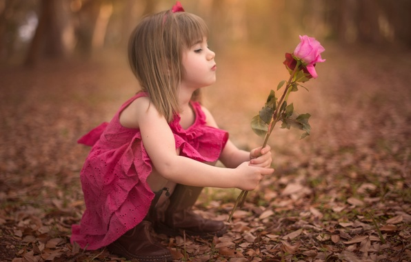 Picture autumn, flower, background, widescreen, Wallpaper, rose, child, girl, wallpaper, girl, rose, flower, widescreen, background, autumn, ...