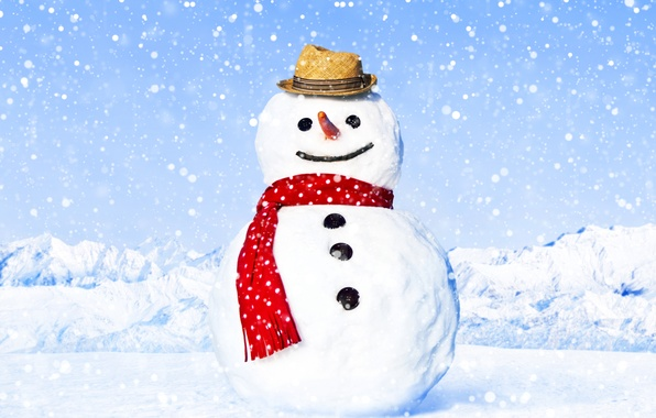 Picture winter, snow, landscape, snowflakes, glare, hat, scarf, snowman, carrots