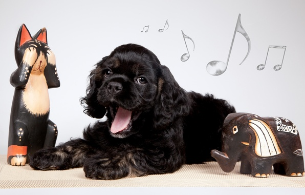 Picture notes, puppy, yawns, figures, elephant, Cocker Spaniel