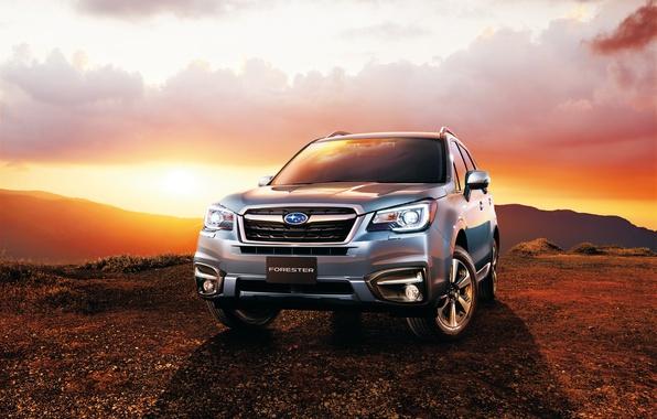 Picture Subaru, Subaru, Forester, Forester