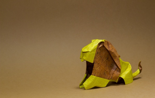 Picture Leo, mane, brown, origami, brown, lion, origami, mane, brown mane, brown mane