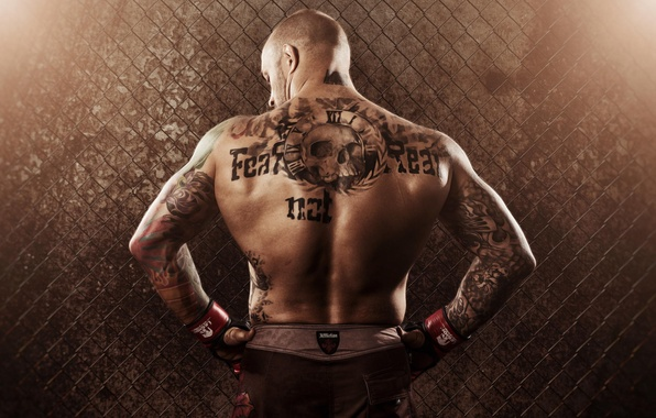 Picture mesh, back, male, tattoo, MMA, fighter, Mixed Martial Arts, Mixed martial arts