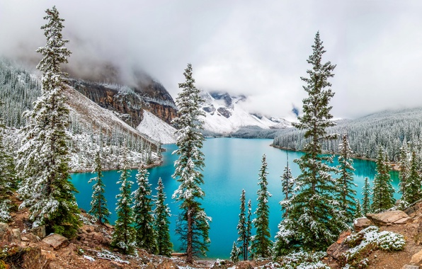 Picture winter, forest, snow, trees, mountains, lake, stones, rocks, Canada, Moraine Lake, Banff