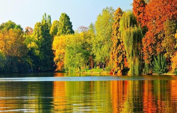 Picture autumn, trees, lake, landscape, nature, autumn, leaves, tree