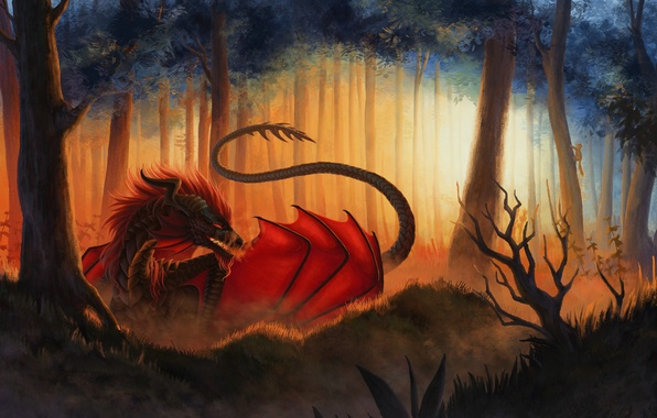 Picture forest, look, trees, fiction, dragon, wings, art, mouth, tail