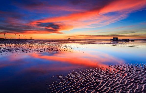 Picture sea, landscape, sunset, windmills