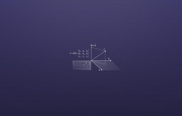 Picture math, work, vectors