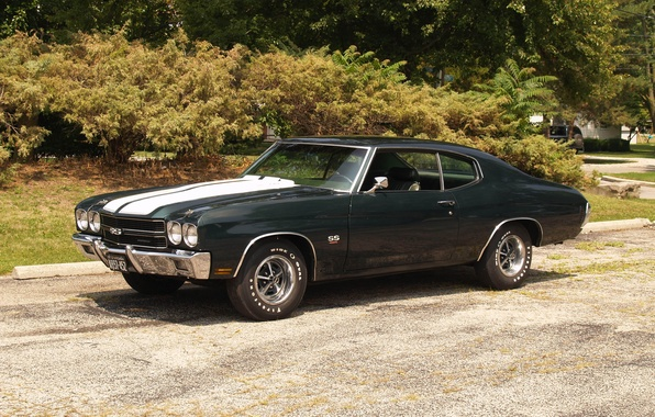 Picture Chevrolet, car, Chevrolet, muscle car, Chevy, Chevelle