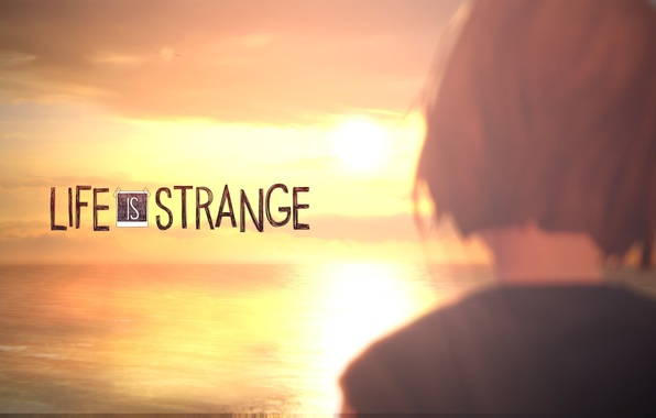 Life Is Strange 2 Wallpaper: Wallpaper Sunset, Sunset, Max, Max, Life Is Strange Images
