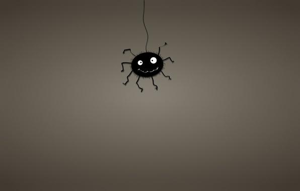 Picture black, minimalism, web, spider, spider, dark background