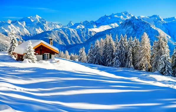 Picture winter, forest, the sky, snow, trees, mountains, nature, house