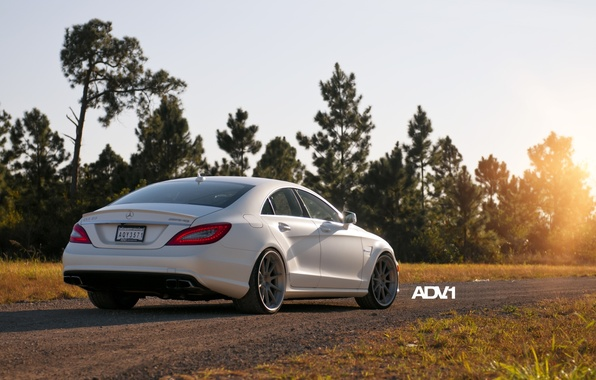Picture road, white, trees, Mercedes-Benz, sedan, Mercedes, rear view, AMG, AMG, adv.1, цлс63, CLS63