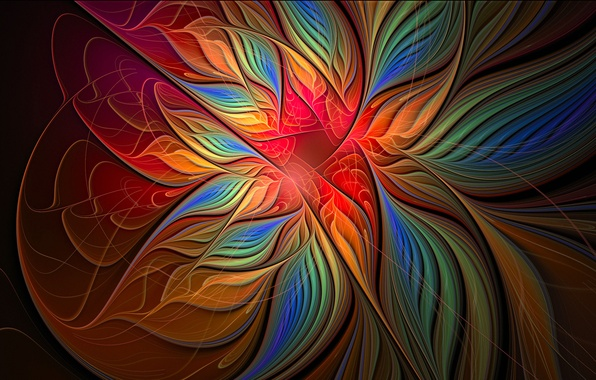 Picture flower, rays, light, line, petals, the volume