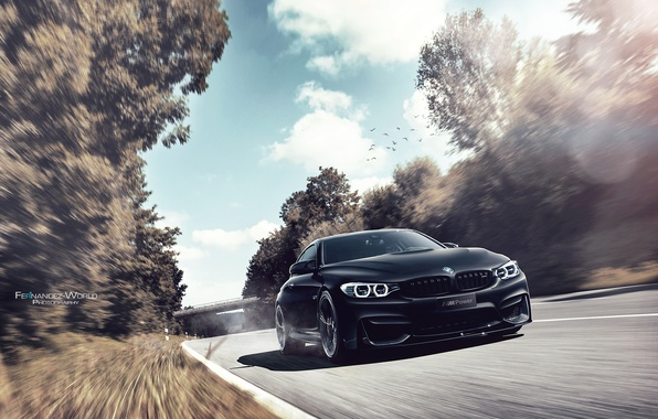 Picture BMW, German, Car, Auto, Speed, Front, Black
