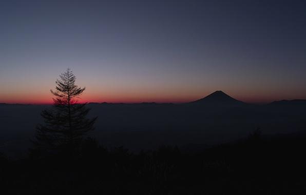 Picture the sky, tree, mountain, Japan, horizon, glow, Fuji