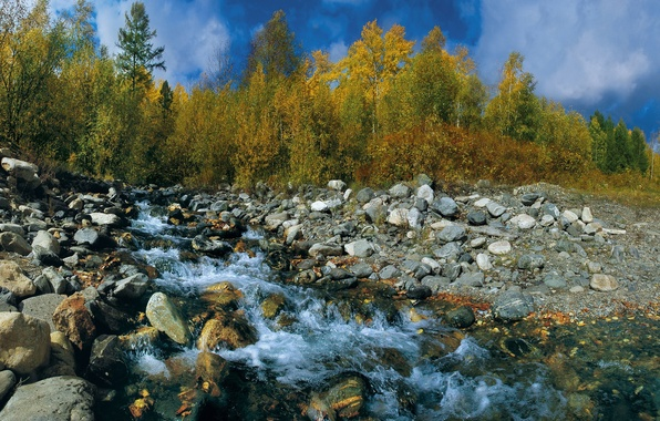 Picture autumn, the sky, leaves, trees, stream, stones