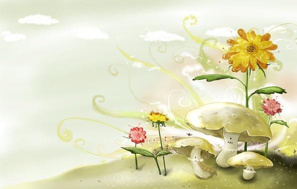 Picture flowers, figure, Mushrooms