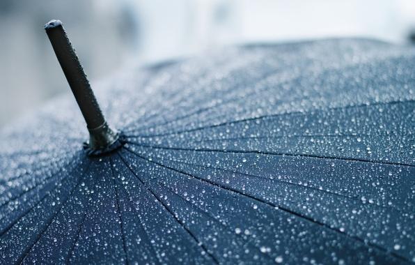 Picture drops, macro, umbrella, rain, umbrella