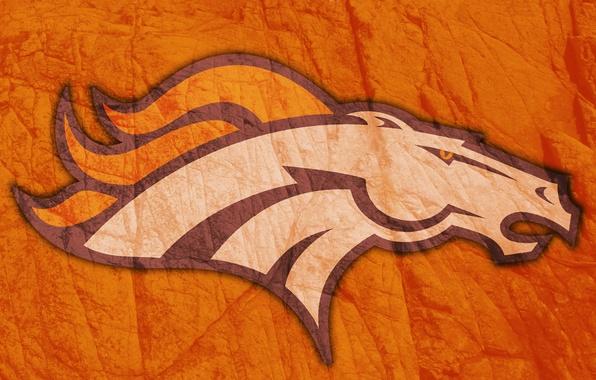 Picture flame, horse, figure, logo, head, mane, American football, emblem, 2014, Denver Broncos