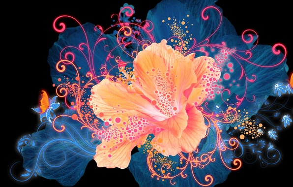 Picture Flower, Glow, Graphics, Flower