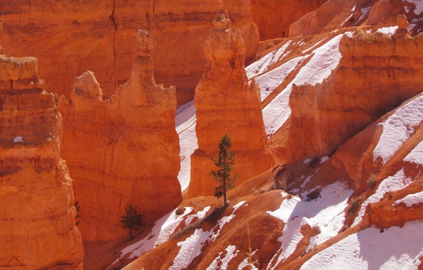 Picture snow, mountains, tree, rocks, Utah, USA, Bryce Canyon National Park