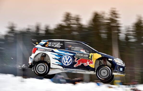 Picture Volkswagen, Jump, Profile, Sweden, WRC, Rally, Polo, Latvala, 2015