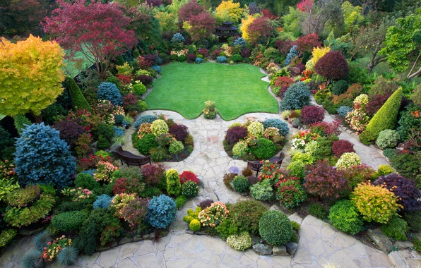 Picture autumn, trees, flowers, design, Park, lawn, UK, the bushes, the view from the top, colorful, …