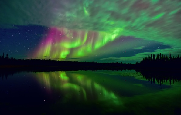 Picture forest, the sky, stars, reflection, night, lake, excerpt, Arctic, tundra, Northern lights, Northern Canada