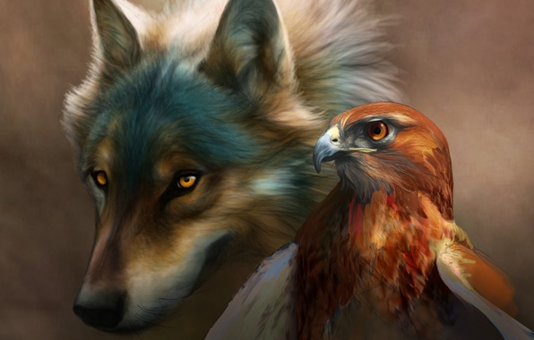 Picture bird, eagle, Wolf, painting, art, novawuff