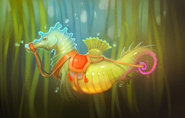 Picture algae, seahorse, saddle, art, seahorse