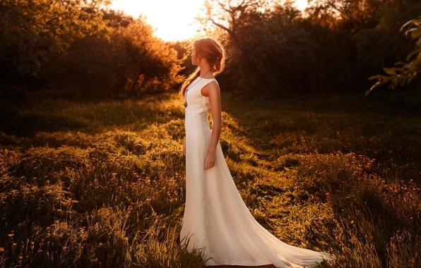 Picture girl, sunset, figure, dress, sunlight