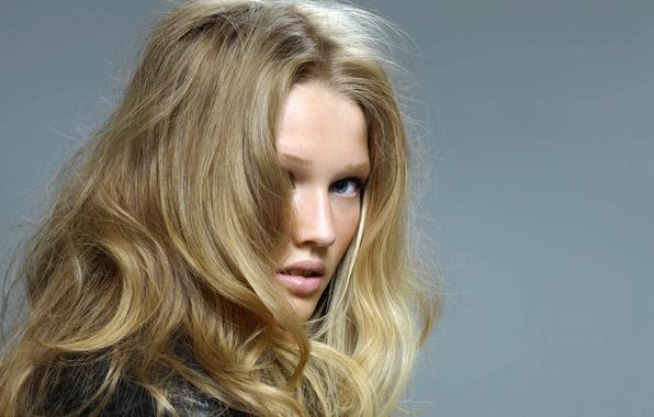 Picture look, girl, face, grey, background, model, hair, blonde, Toni Garrn, Victoria's Secret Angel, Toni Garrn