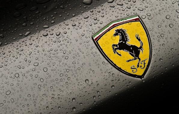 Picture drops, macro, background, logo, cars, emblem, ferrari, coat of arms, Ferrari, cars, auto wallpapers, car …
