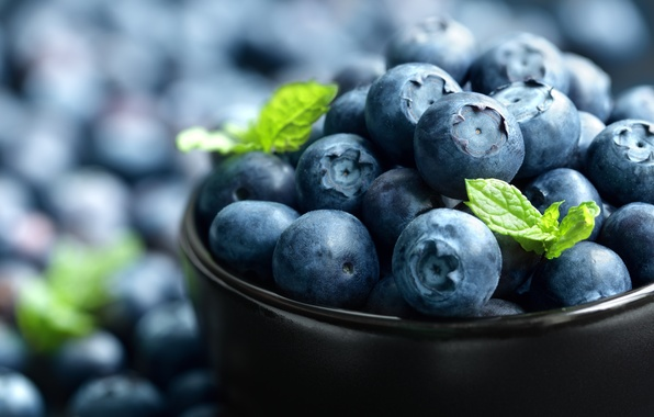 Picture berries, blueberries, bowl, fresh, blueberry, blueberries, berries