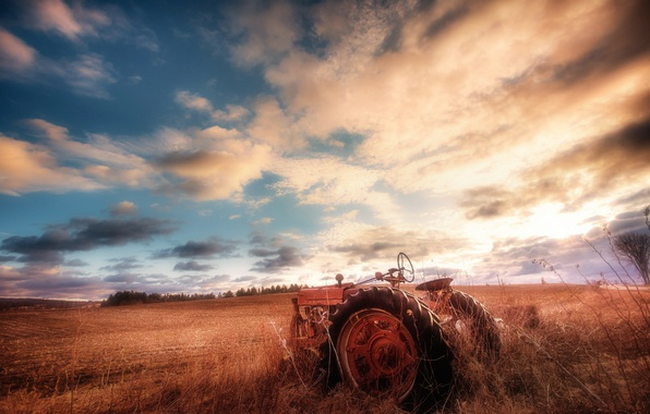Picture field, the sky, tractor