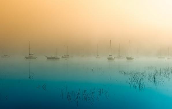 Picture landscape, fog, lake, boats, morning