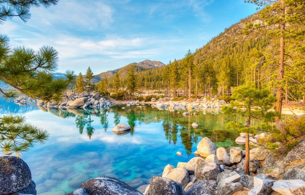 Picture forest, water, trees, mountains, branches, lake, reflection, stones, USA, Lake Tahoe