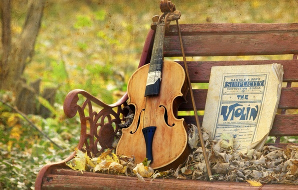 Picture music, violin, texture, bench