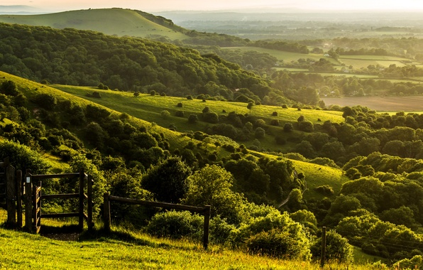 Picture trees, landscape, nature, hills, the fence, field, England, the evening, fence, green, UK, farm, England, …