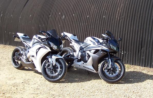 Picture motorcycles, honda, Honda, cbr 1000 rr, cbr 600 rr